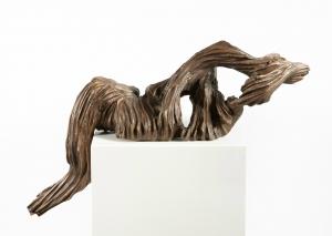 Galerie - Fiederungen - Featherings
