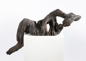 Galerie - Fiederungen 5