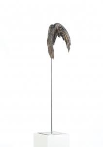 Galerie - Ikarus 11