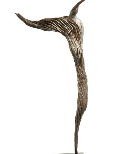 Kolibri-Bronze-1-7