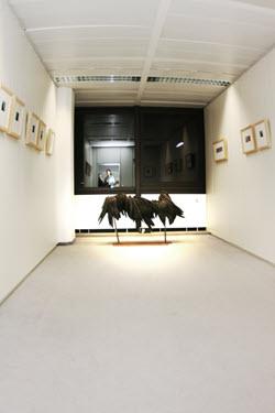 Galerie-Ausstellungen-28