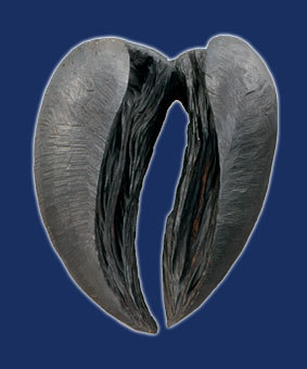 Galerie-Herzzeitlose-36
